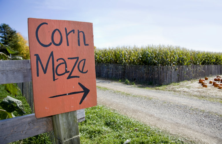 Orange Sign with Arrow that Points to Corn Maze