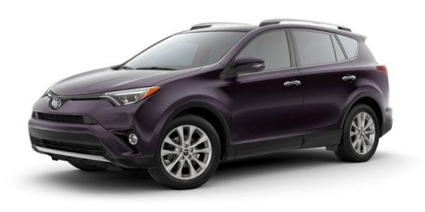 Black Currant Metallic 2018 Toyota RAV4 Exterior