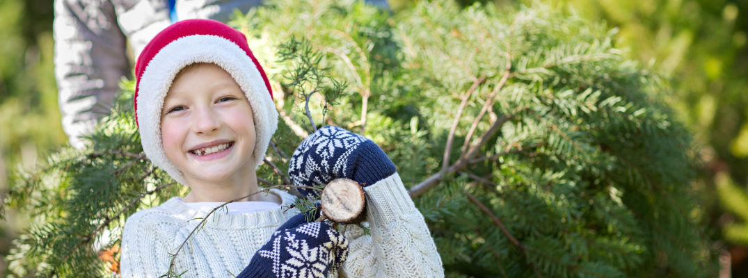 Smiling Boy at Christmas Tree Farm Wearing Santa Hat and Holding Cut Tree