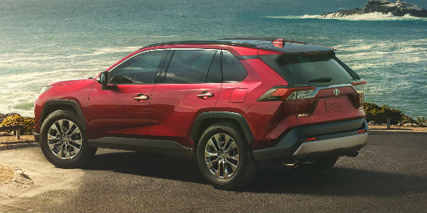 Red 2019 Toyota RAV4 Rear Exterior Parked Next to the Ocean