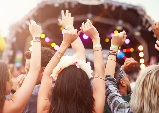 people from back with their hands up enjoying concert